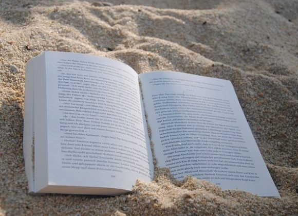 "A ""Professional"" Beach Read: Dare to Lead"