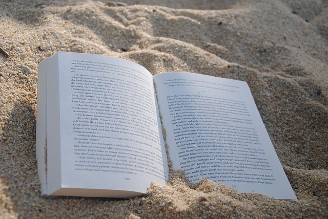 "A ""Professional"" Beach Read: Dare to Lead"